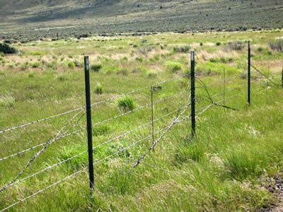 Barbed Wire Property Right Solution Is Apt For Modern