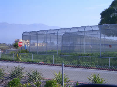 A commercial security fence of high height and small mesh size is installed between commercial areas and highways.