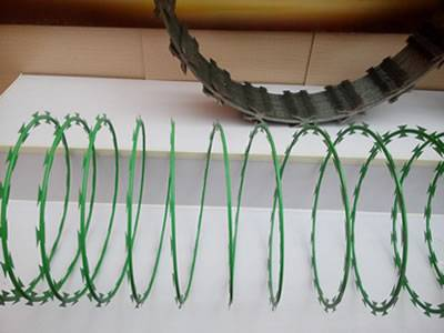 A stretching coil of concertina razor wire with PVC coated in green color.