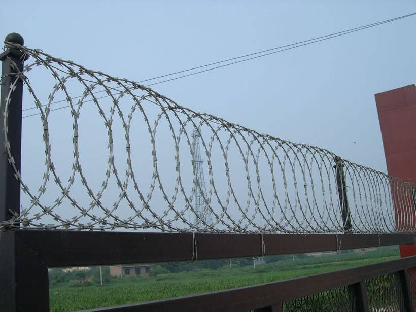 A row of flat wrap razor wire is installed on metal bar as security fence.