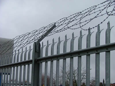 The top of security palisade fence with triple head corrugated W section combines with barbed razor wire, including 3 lines of barbed wires and flat razor wires.