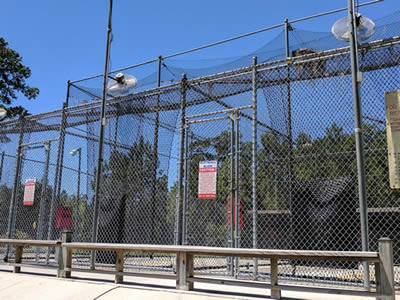 A chain link security fence of high height and small size of mesh is used in Softball field.